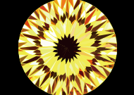 Sunflower (101 facets)